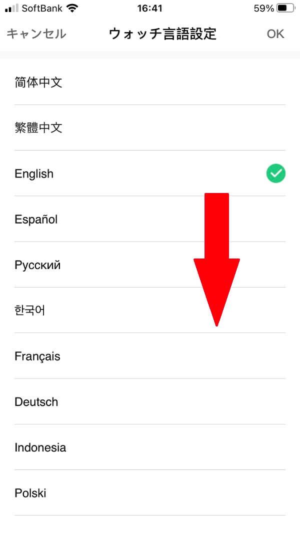 『Amazfit T-Rex Pro』日本語設定4